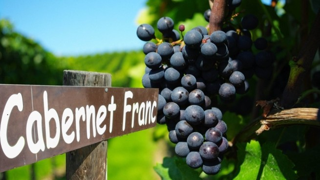 Next few years we'll have Cabernet Fran, Reisling, LaCrescent and Marquette